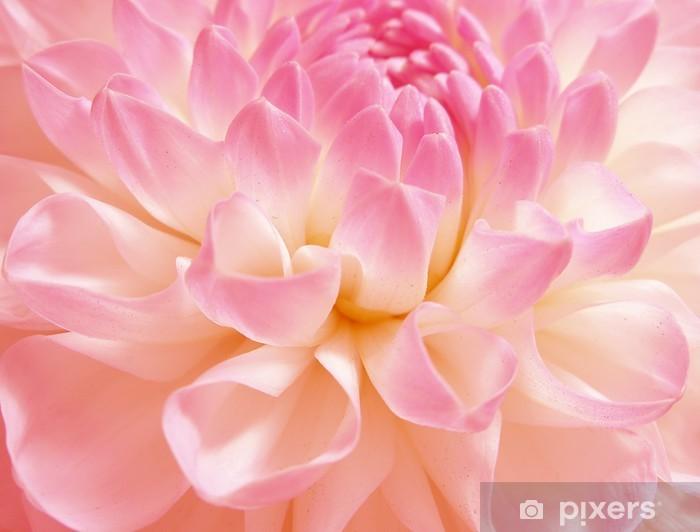 Naklejka Pixerstick Różowy kwiat grzywny - Tematy