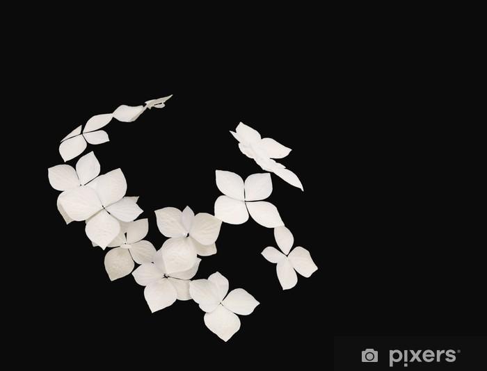 Fototapeta winylowa Hortensja sylwetka b - Kwiaty