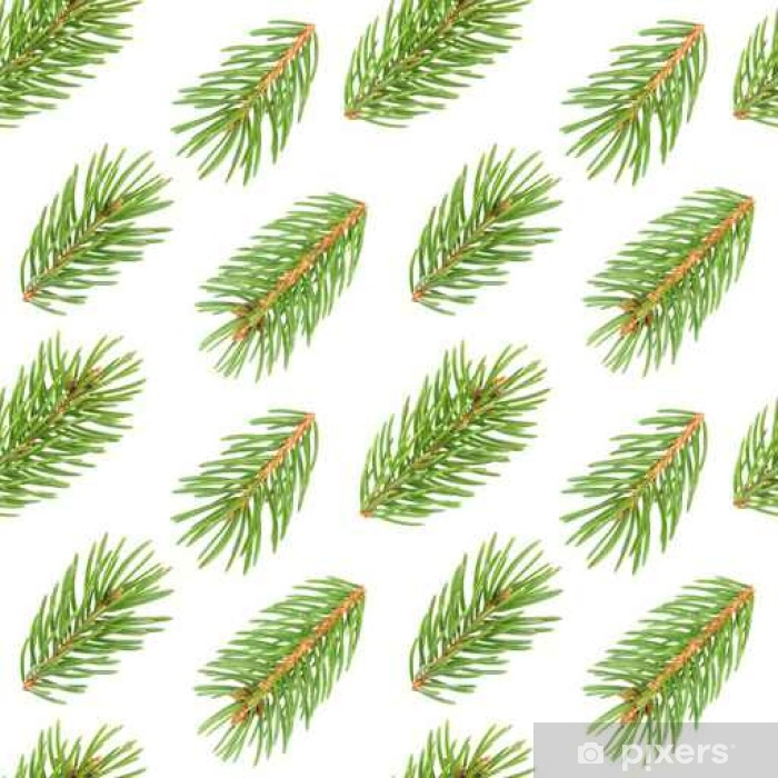 Seamless Pattern Of Fir Tree Branches Vinyl Wall Mural Plants And Flowers