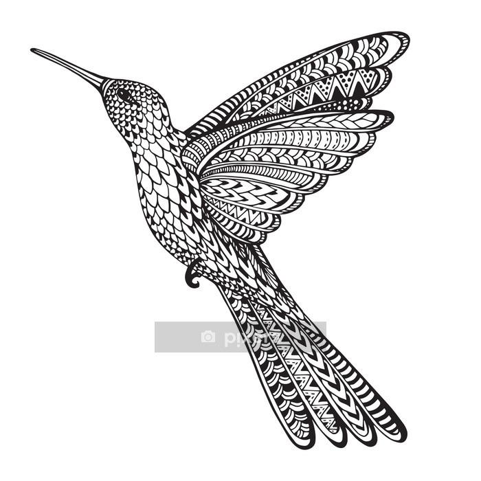 Hand drawn abstract flying colibri in ornate doodle style Wall Decal - Animals