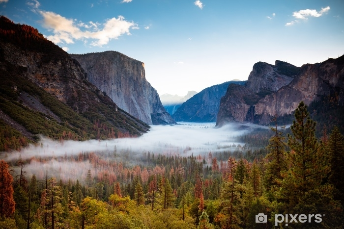 Yosemite Valley from Tunnel View Vinyl Wall Mural - Landscapes