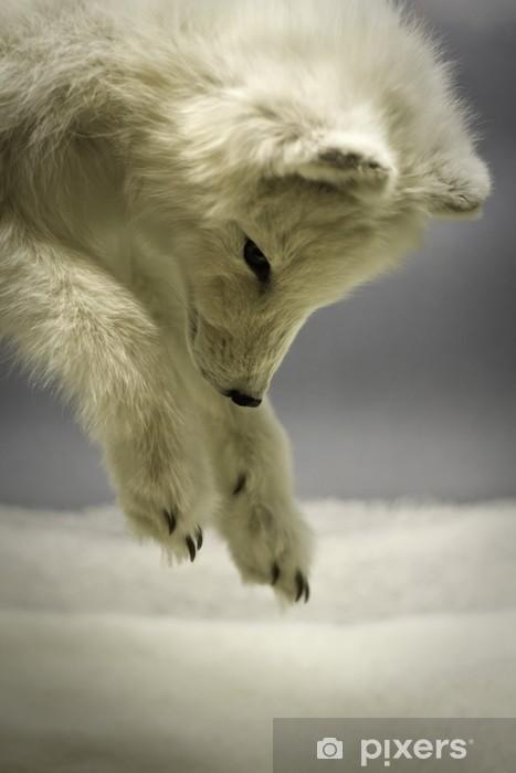 Vinyl Fotobehang Arctic vossenjacht in de sneeuw - Zoogdieren