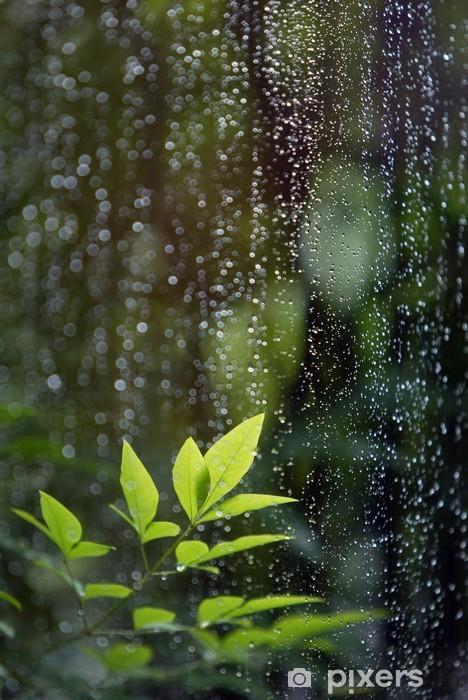 Pixerstick Sticker Bladeren in de regen - Thema's