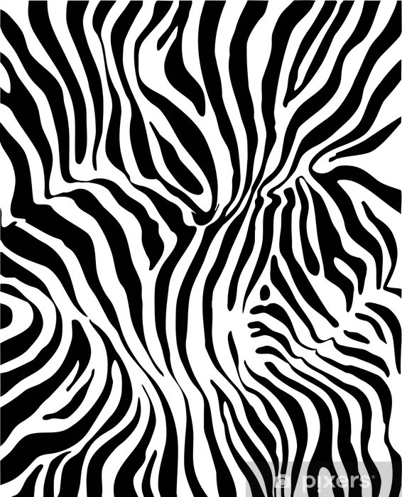 Papier peint vinyle Zebra skin - Styles