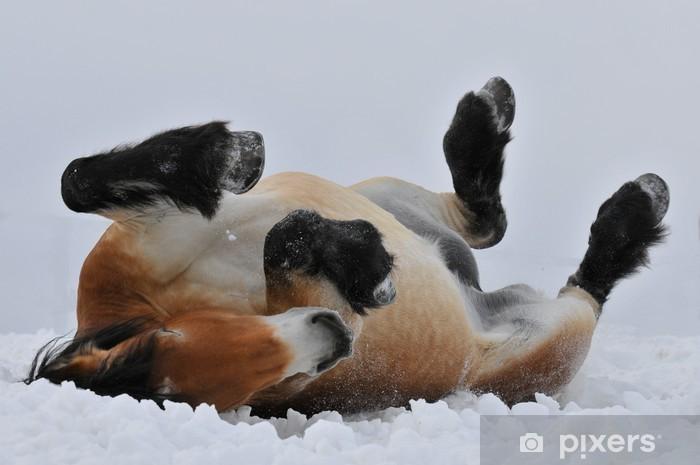Nálepka Pixerstick Klisna na sněhu - Štěstí