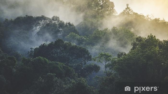 Fototapeta winylowa Krajobraz tropikalny las deszczowy, Azja - Krajobrazy