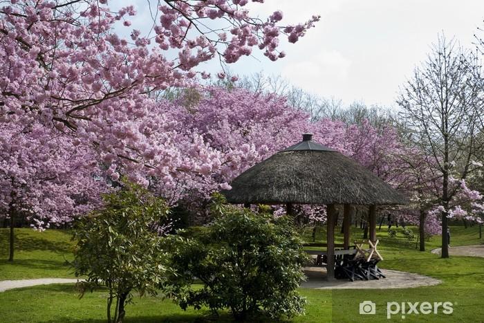 Sticker Jardin Japonais Hasselt Belgique Pixers Nous Vivons
