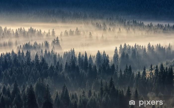 Afwasbaar Fotobehang Dennenbos in de mist in de bergen - Grafische Bronnen