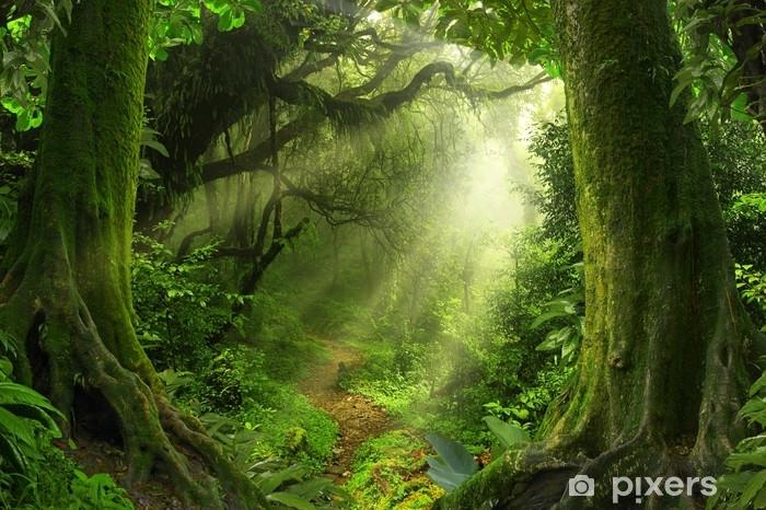 Självhäftande Fototapet Tropisk djungel - Landskap