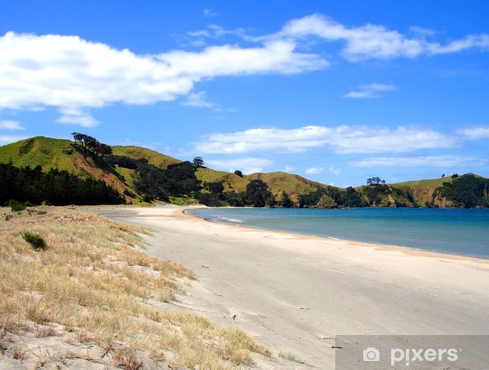 Pixerstick Aufkleber Whangapoua Beach, Great Barrier Island, Neuseeland - Ozeanien