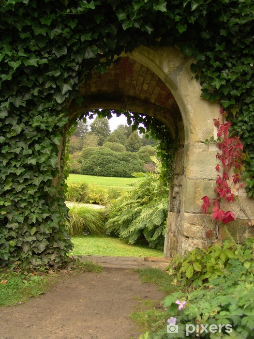 ivy climbing up wall on old archway in garden Vinyl Wall Mural - Home and Garden
