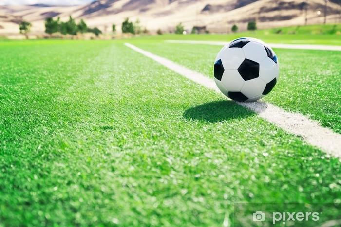 Fototapeta samoprzylepna Tradycyjna piłka na boisku do piłki nożnej - Sport