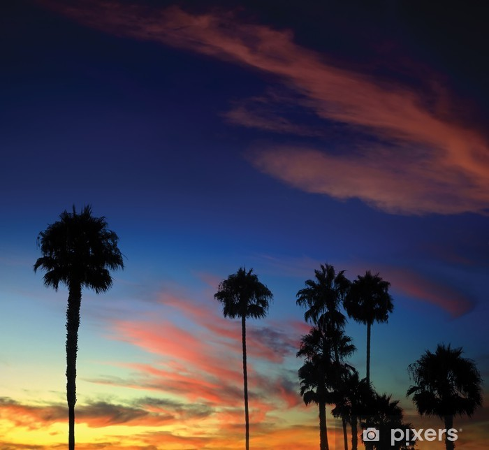 Naklejka Pixerstick Palm tree sunset - Pustynie
