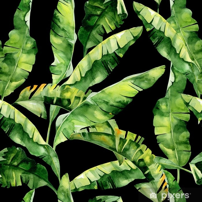 Seamless Watercolor Illustration Of Tropical Leaves Dense Jungle Pattern With Tropic Summertime Motif May Be Used As Background Texture Wrapping Paper Textile Wallpaper Design Banana Palm Leaves Wall Mural Pixers We Motif tropical tropical leaves tropical flowers tropical plants tropical design figurative kunst buy 'banana leaves,tropical leaves, green leaves, leaf, modern art, wall art, print, minimalistic. seamless watercolor illustration of tropical leaves dense jungle pattern with tropic summertime motif may be used as background texture wrapping paper textile wallpaper design banana palm leaves wall mural pixers we
