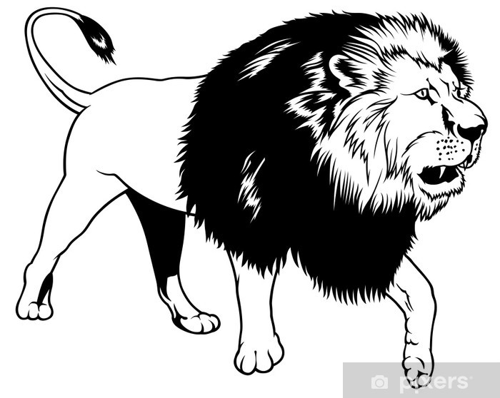 Lion Black Outline Illustration Wall Mural Pixers We Live To Change Learn how to draw lion face outline pictures using these outlines or print just for coloring. lion black outline illustration wall mural pixers we live to change