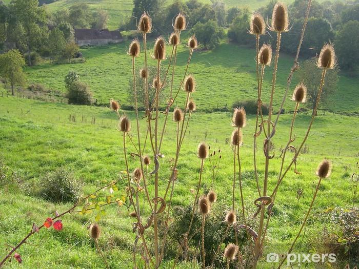 Vinilo Pixerstick Epines - Plantas