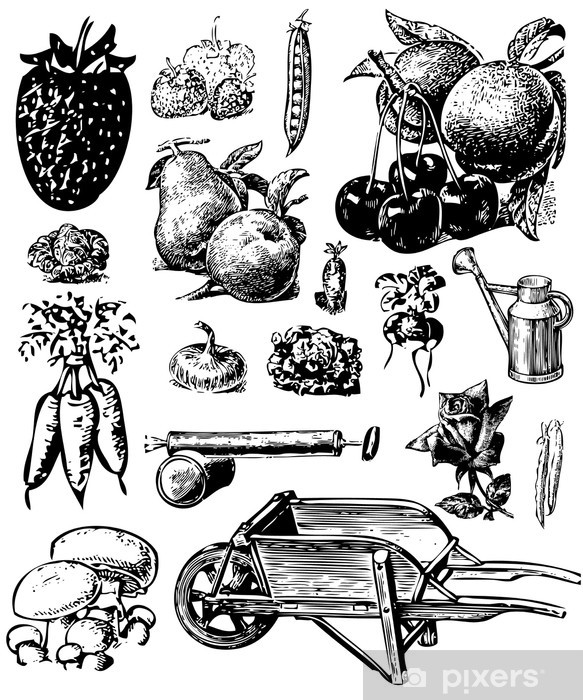 Sticker Pixerstick Fruits - Thèmes