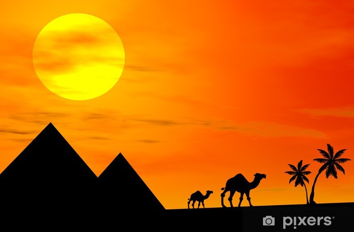 3d image of camels silhouette in the desert at sunset Vinyl Wall Mural - Deserts