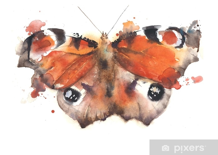 Fotomural Estándar Ejemplo colorido de la pintura de la acuarela del insecto del machaon de la mariposa aislado en el fondo blanco - Animales