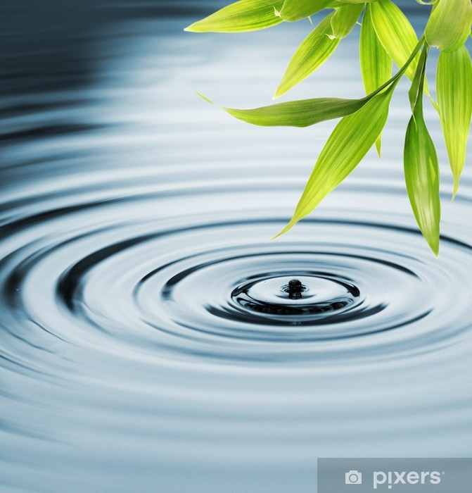 Pixerstick Sticker Verse bamboe bladeren over water - iStaging