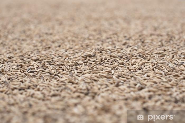Fototapeta zmywalna Gros plan sur riz sec et frais pour tekstury - Jedzenie