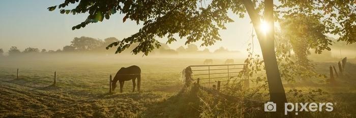 Fototapeta winylowa Samotny koń na jesiennym pastwisku - Krajobrazy
