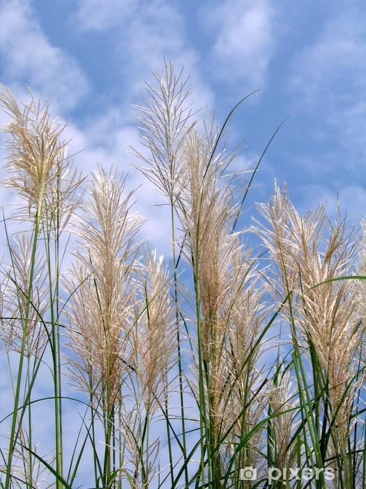 Pixerstick Aufkleber Wilde Getreidehalme - Landwirtschaft