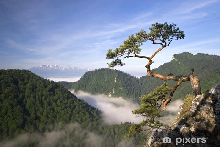 Pixerstick Sticker Sokolica Peak in Pieniny, Polen - Bergen