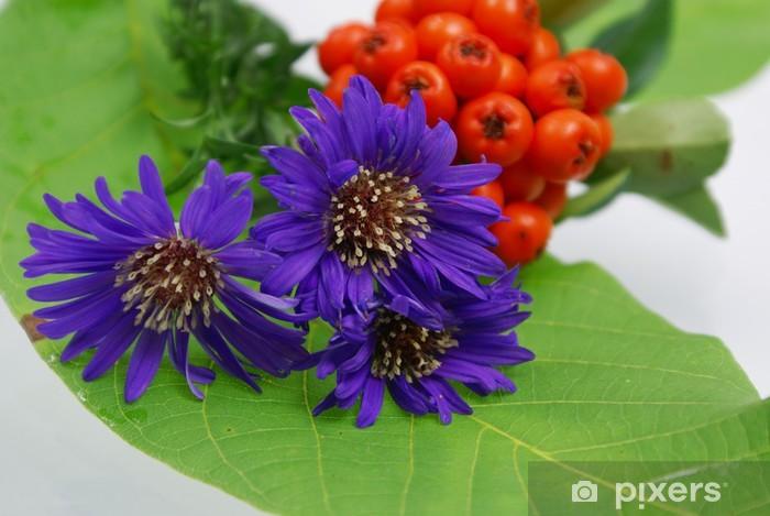 Sticker Pixerstick Herbstastern - Saisons