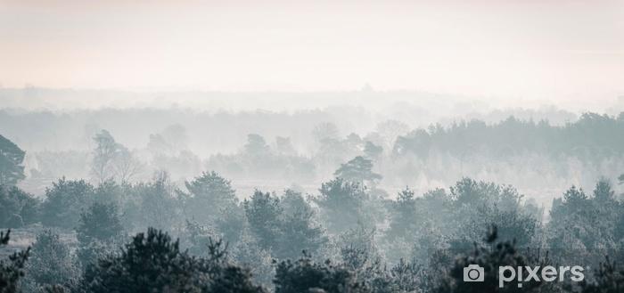 Naklejka Pixerstick Sosnowy zimowy las we mgle. - Krajobrazy