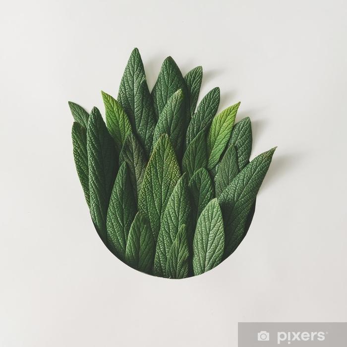 Naklejka Pixerstick Twórczy minimalny układ zielonych liści. koncepcja przyrody. płaskie lay. - Rośliny i kwiaty