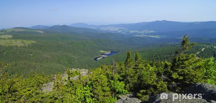 Vinil Duvar Resmi Waldlandschaft und Nationalpark - Bay.Wald - Açıkhava sporları