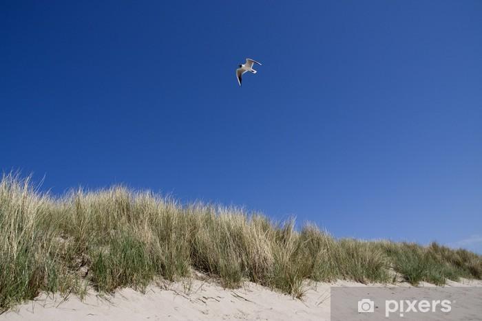 Fotomural Estándar Flying gaviota - Agua