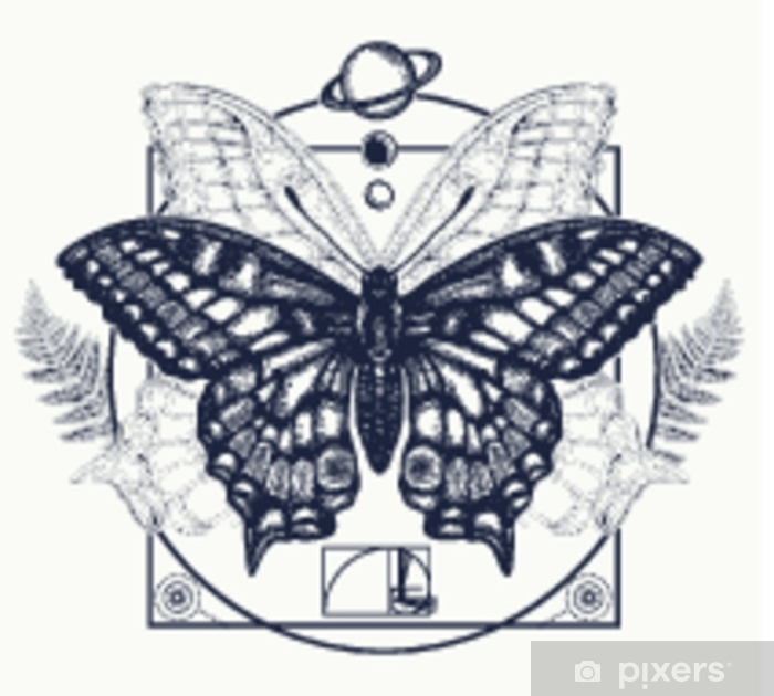 c6e7464ab1619 Butterfly tattoo art. Symbol of magic, renaissance, esoterics, travel, soul.