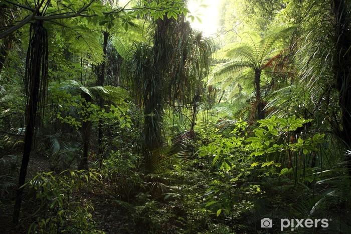 Tæt jungle Vinyl fototapet -