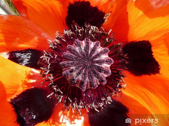 Papier peint vinyle Fleur4 -