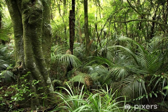 Vinil Duvar Resmi Tropik orman -