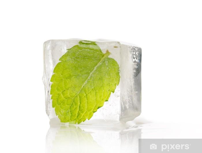 Vinyl-Fototapete Blatt Minze eingefroren - Pflanzen