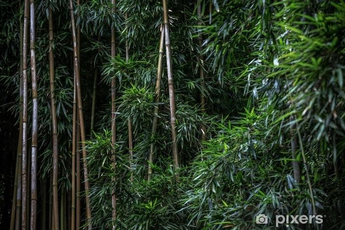 Zelfklevend Fotobehang Groen bamboebospatroon - Milieu