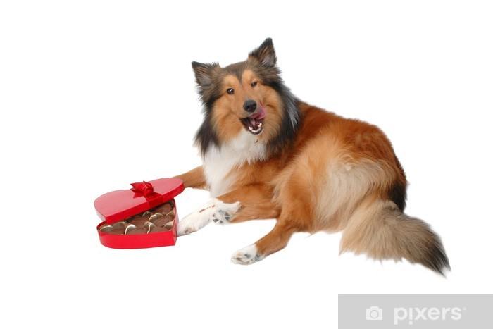 Nálepka Pixerstick Šťastný Valentýn den psík - Mezinárodní svátky