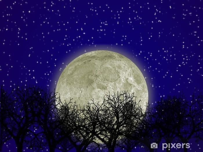 Kuu ja metsä Vinyyli valokuvatapetti - Themes