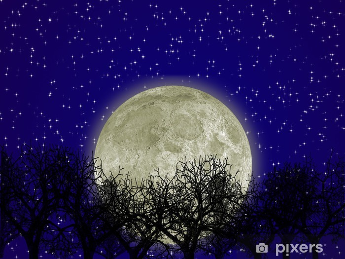 Moon and forest Vinyl Wall Mural - Themes