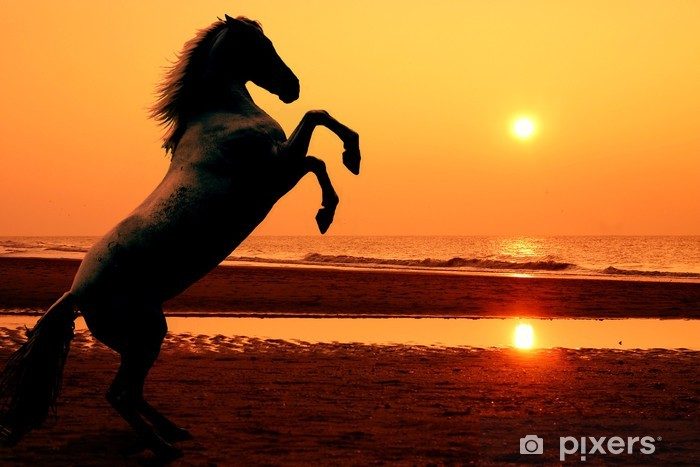 Pixerstick Sticker Steigerend paard bij zonsondergang - Thema's