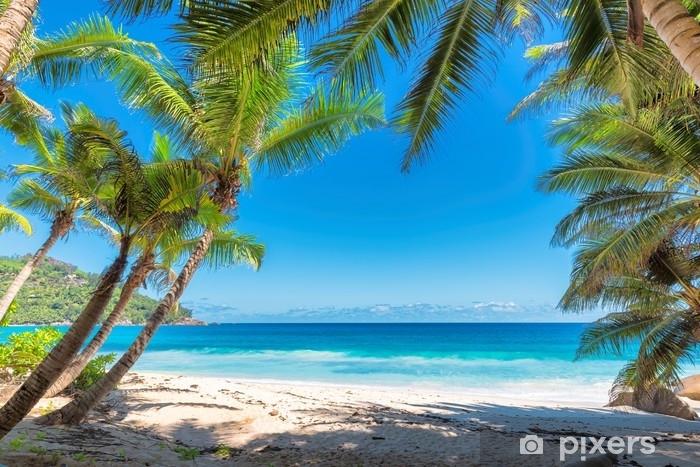 Vinilo Pixerstick Palmeras en la playa tropical. - Viajes