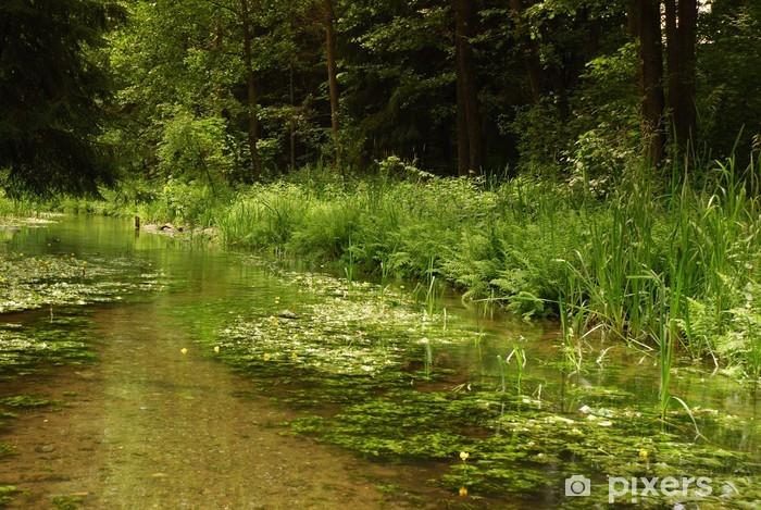 Vinyl-Fototapete Steingut - Natur und Wildnis