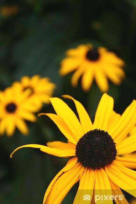 Papier peint vinyle Soleil d'automne - Fleurs