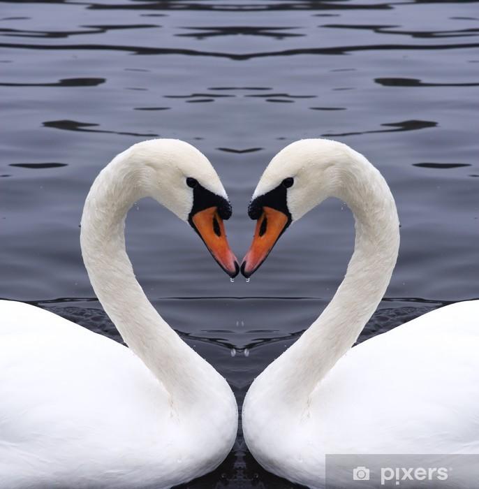 Pixerstick Aufkleber Swans Herzen - Schwäne