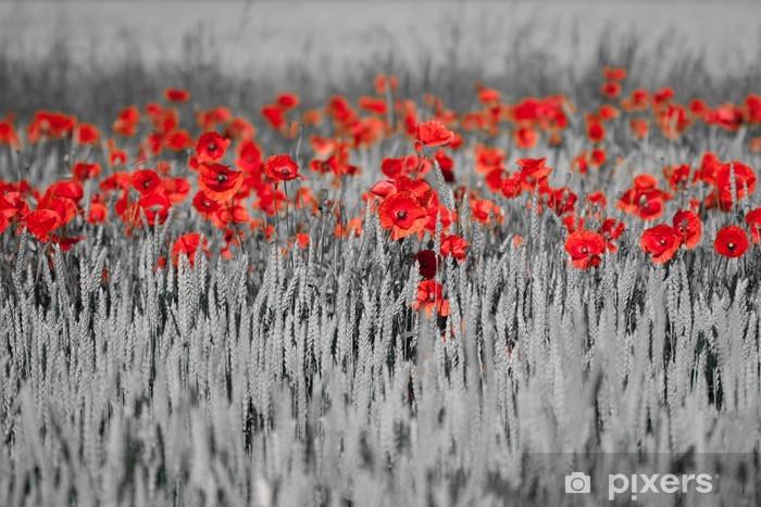 Sticker Pixerstick Coquelicots rouges noir blanc - Thèmes