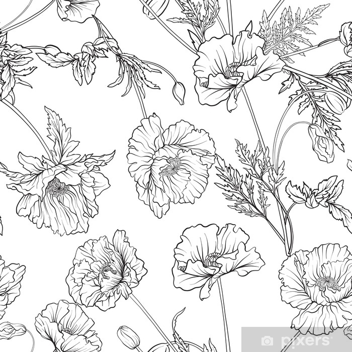 Fototapeta Wzór Z Kwiatami Maku W Botanicznym Stylu Vintage Zarys