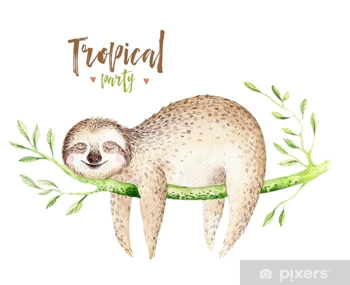 Bebek Hayvanlar Tembel Kres Izole Boyama Suluboya Boho Tropikal